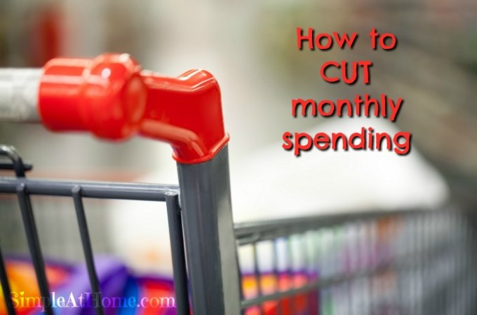 Cut Monthly Spending With These 5 Tips