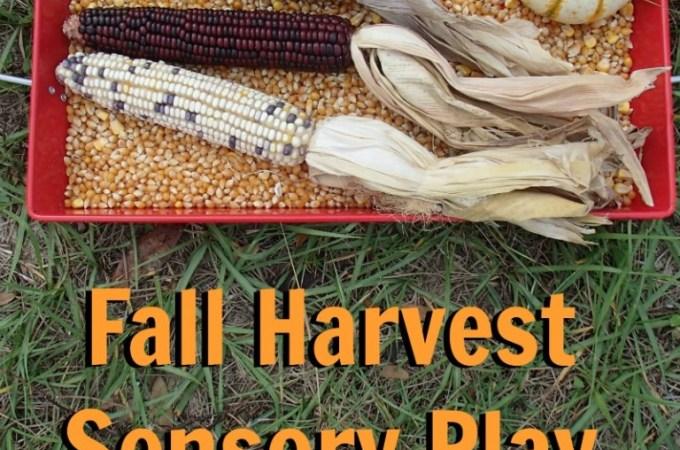 Fall Harvest Sensory Play
