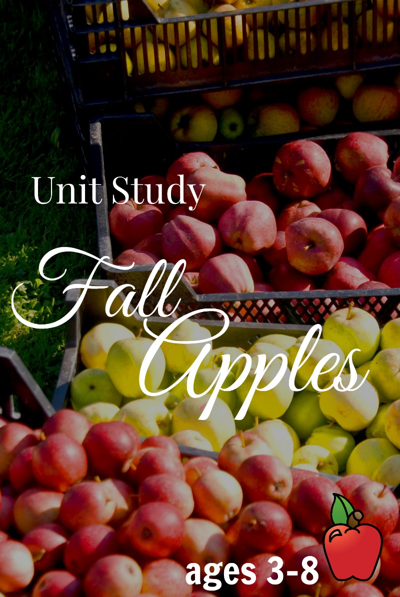 Looking for a last minute Apple Unit Study? Here is a fall apple one for ages 3-8