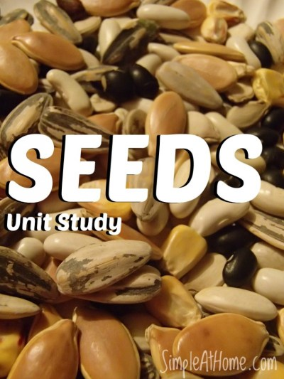Unit Study for all ages on SEEDS