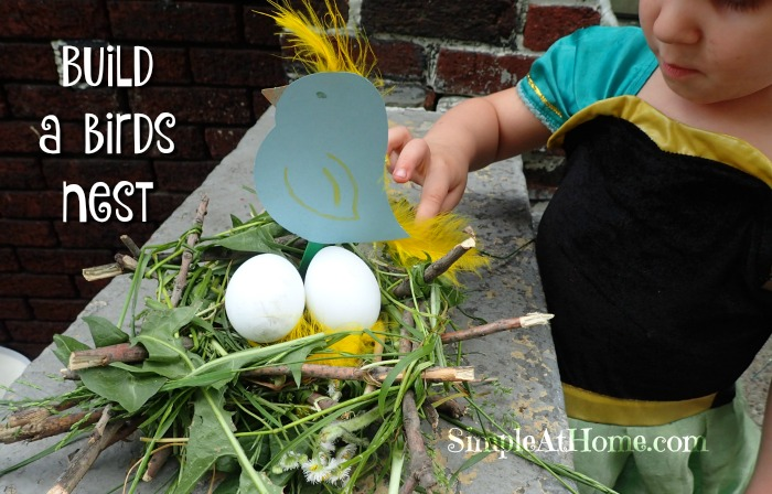 This build a bird nest activity is a great hands on science project.