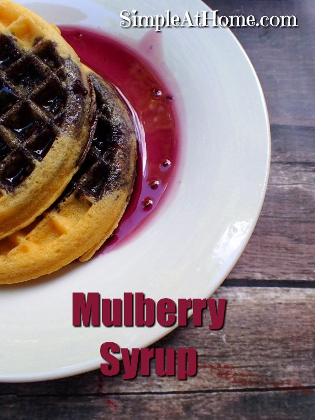 Got mulberries in your neighborhood? This mulberry syrup recipe is a great way to put them to use