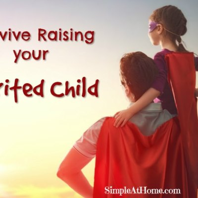 Tips for raising your spirited child   parenting   kids