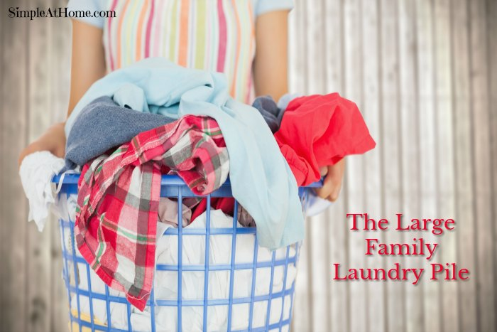 Tackling the Large Family Laundry Pile