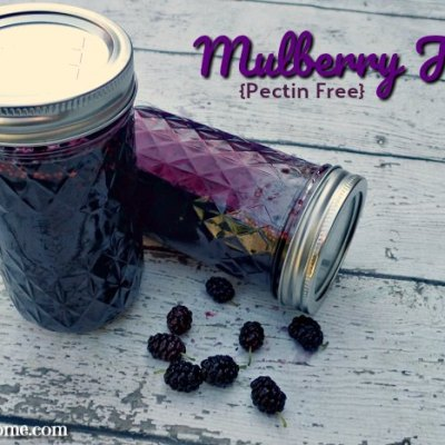 Mulberry Jam {Pectin Free}