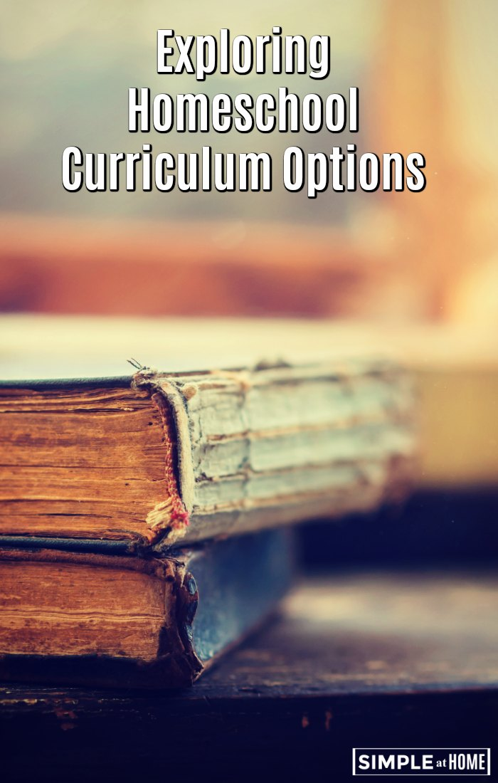 Exploring Homeschool Curriculum Options