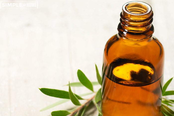 what is tea tree oil good for