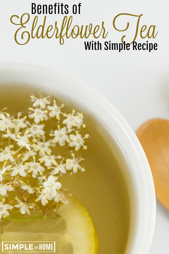 Elderflower Tea Benefits With Easy Elderflower Tea Recipe