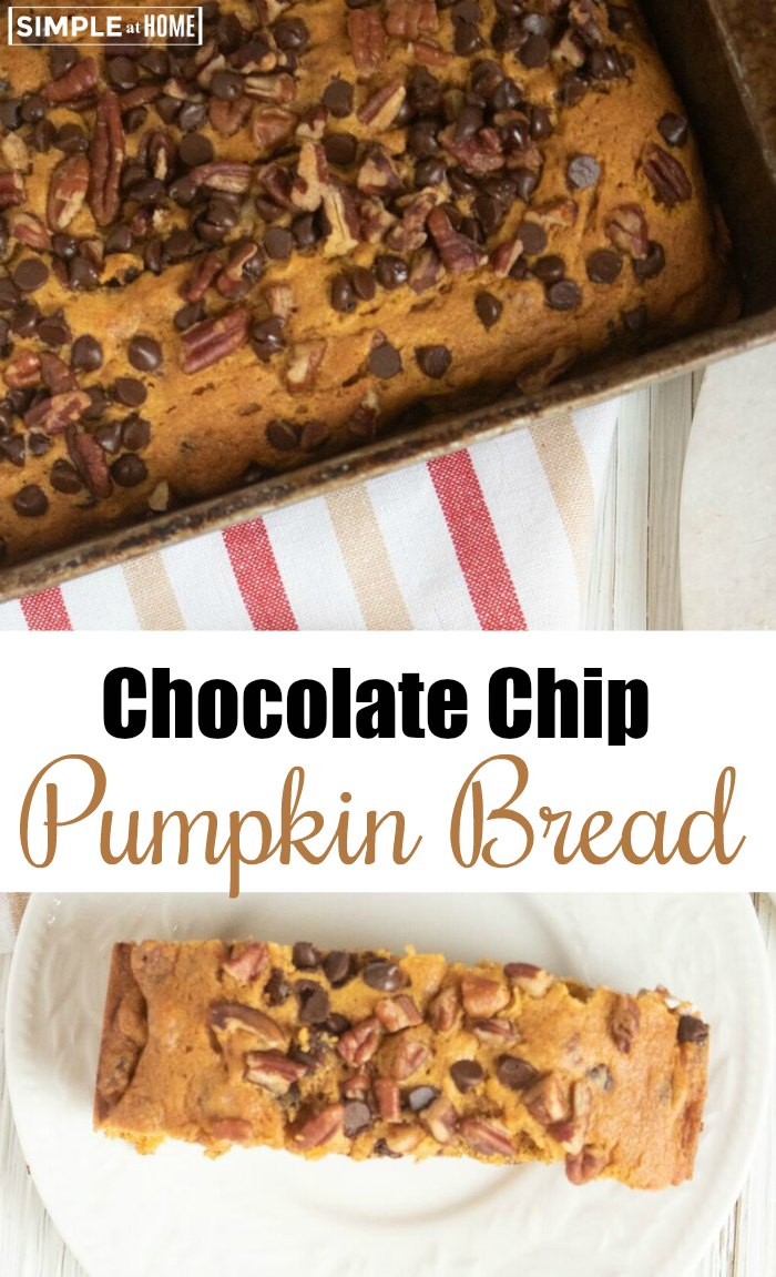 simple chocolate chip pumpkin bread