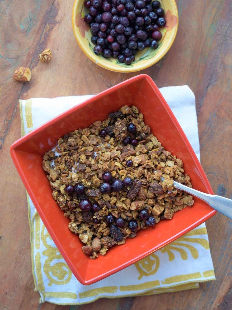 Bowl of Okara Breakfast Granola with Greek Yogurt and Blueberries