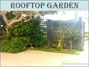 HometoCottage: Rooftop Garden