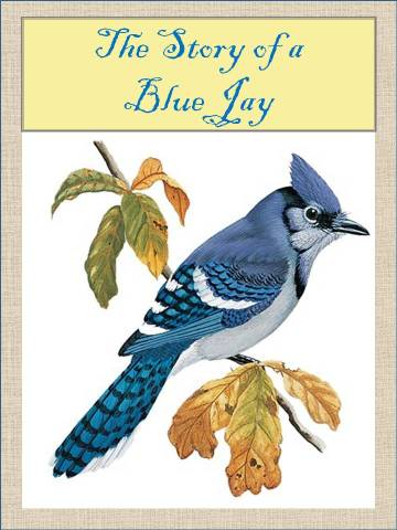 HometoCottage.com The Story of a Blue Jay Title Page