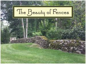 HometoCottage.com The Beauty of Fences