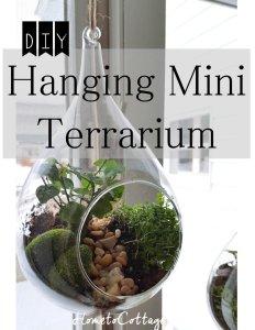 HometoCottage.com DIY Hanging Terrarium