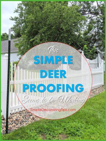 Simple Deer Proofing SimpleDecoratingTips.com