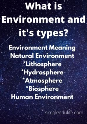 What is Environment and its types_