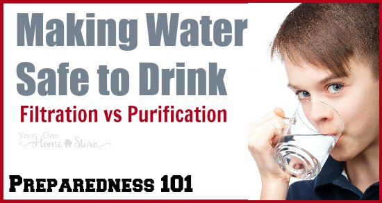 Making Water Safe to Drink: Water Filtration and ...