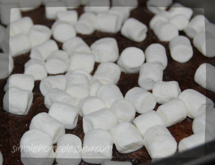 brownies in a snowstorm
