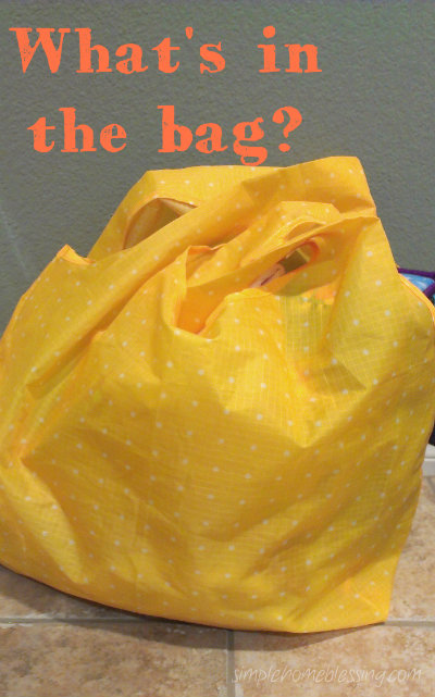 what's in the bag