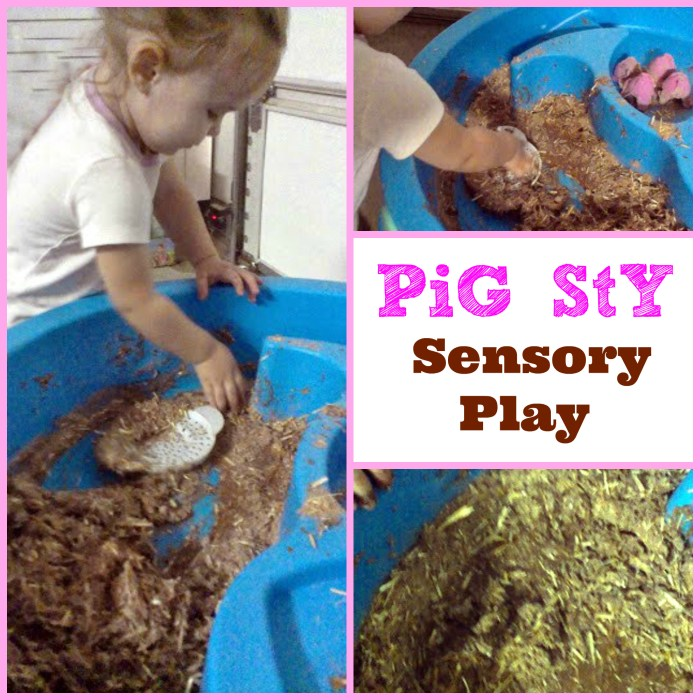 sensory pig sty wet and messy play