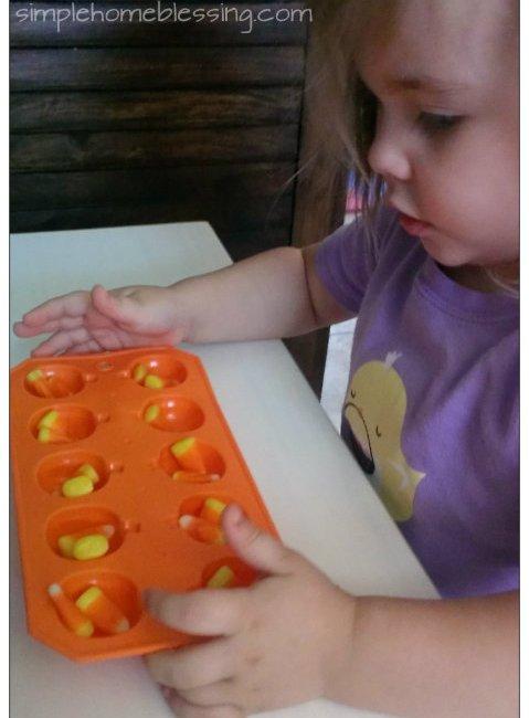 pumpkin counting