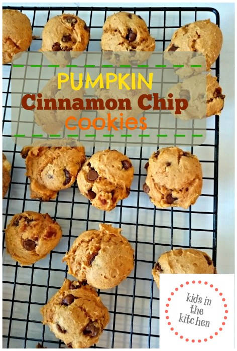 Kids in the Kitchen - Pumpkin Cinnamon Chip Cookies - so simple!