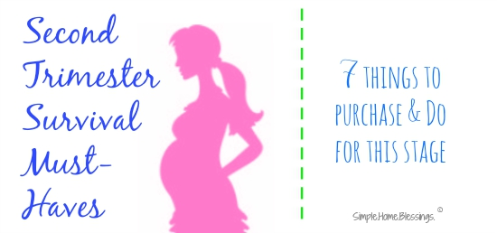 a real deal list of must have items for surviving the second trimester of pregnancy