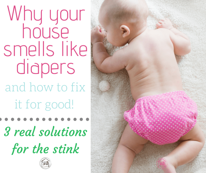 Face it: your house stinks because of diapers. Here's what you did wrong and how to fix it fast! These diaper pail solutions will help solve your current diaper pail problems.