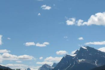 Happy New Year and my January 2017 Goals