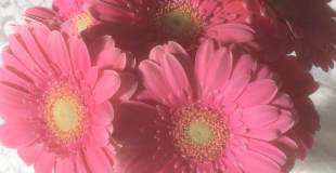Small Ways To Show Kindness