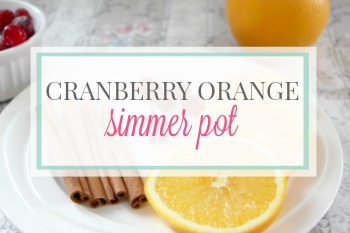 Cranberry Orange Simmer Pot