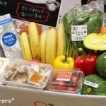 献立キット「Kit Oisix」と食材8品が1,980円オイシックスお試しセットと野菜ジュースVegeel(べジール)
