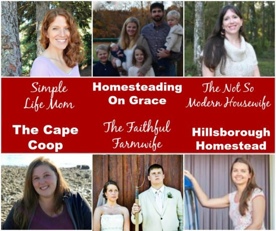 Homestead Blog Hop Hosts Feb 2017
