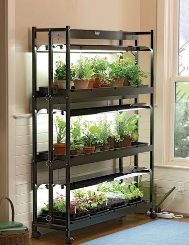 Homestead Blog Hop Feature DIY Green House