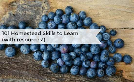 Homestead Blog Hop -101-homesteading-skills