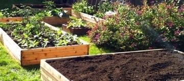 Homestead Blog Hop Feature - raised garden beds
