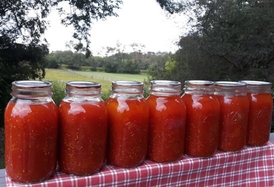 Homestead Blog Hop Feature - Safely canning-crushed-tomatoes