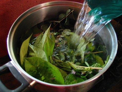 Photograph of spearmint leaves soaking in a pot in preparation for tea.