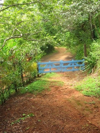 Photograph of a light blue gate separating a farm road from a municipally maintained access road.
