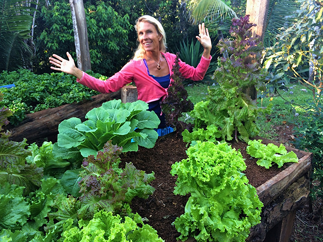 Lettuce, spinach, kale and basil grow in raised beds