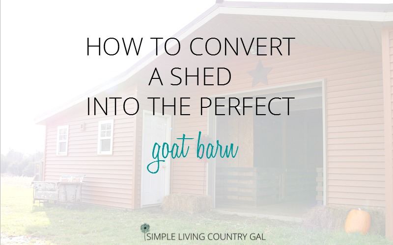CONVERT A SHED INTO GOAT BARN