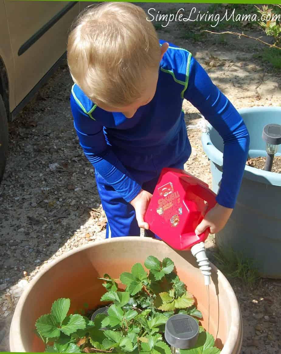 Gardening Preschool Theme