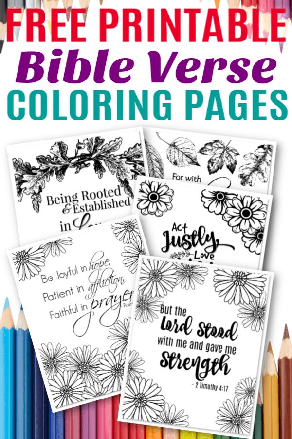Free Printable Bible Verse Coloring Sheets
