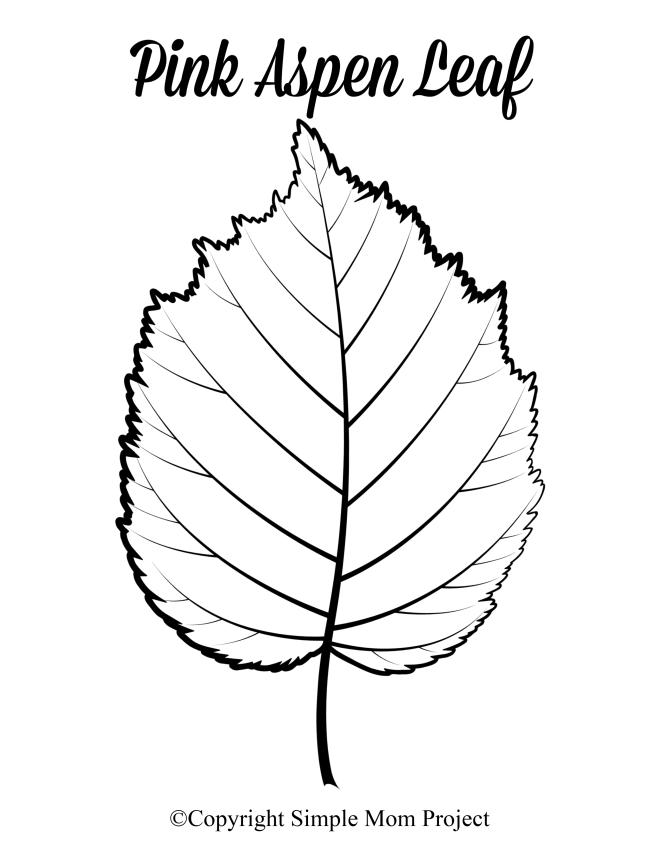 Free Printable Large Pink Aspen Leaf Template