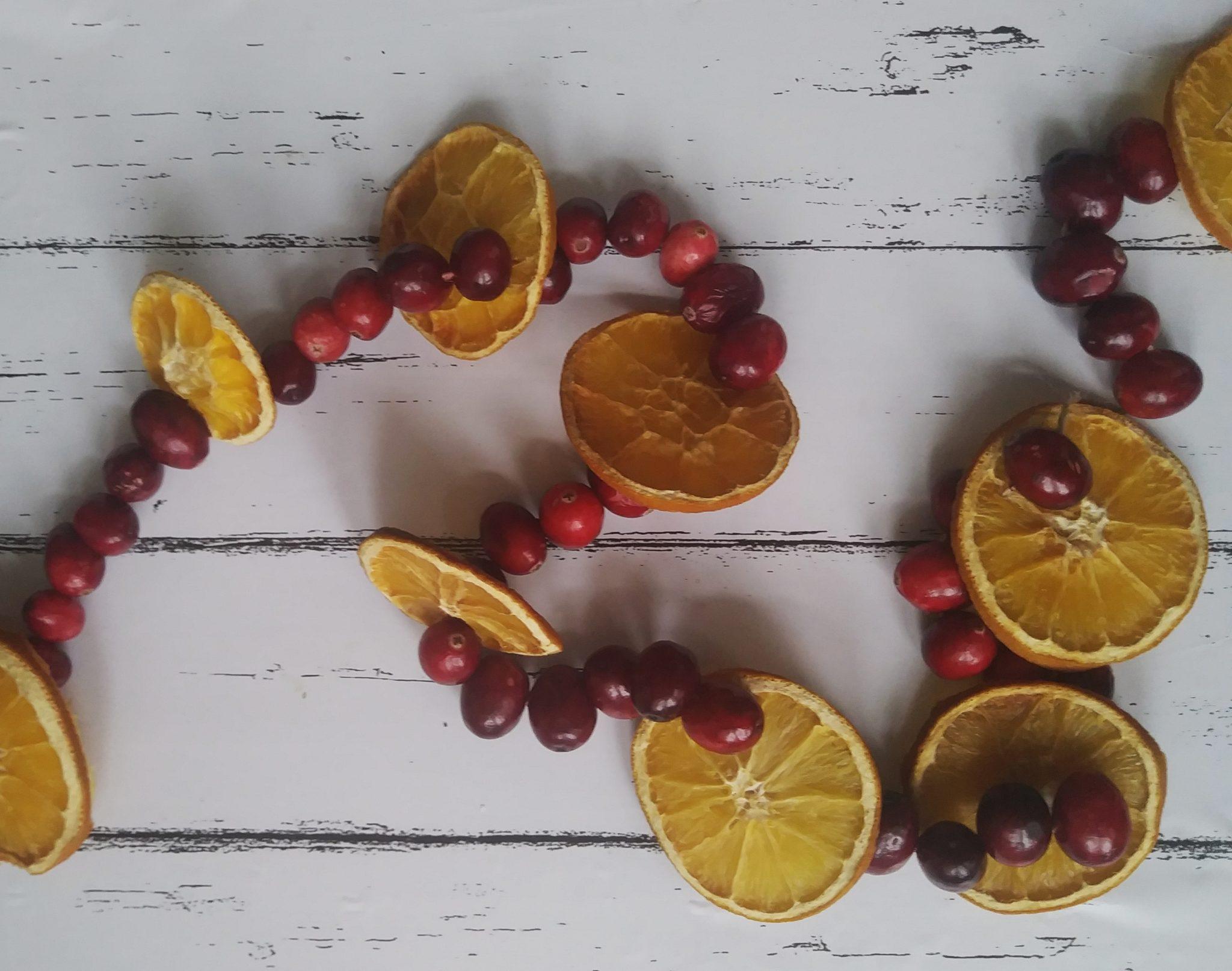 Orange & Cranberry Garland   Simple Mom Review