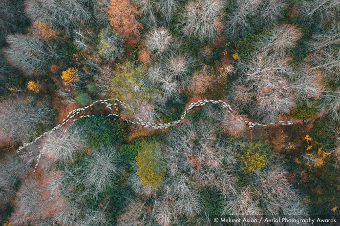 2020 Aerial Photography Awards