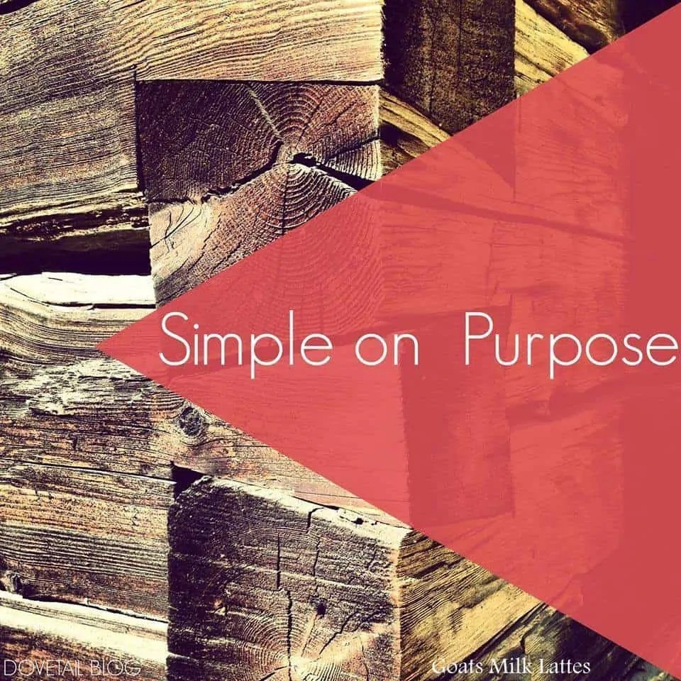 Simple on Purpose {Pursuing Simple Living As A Family}