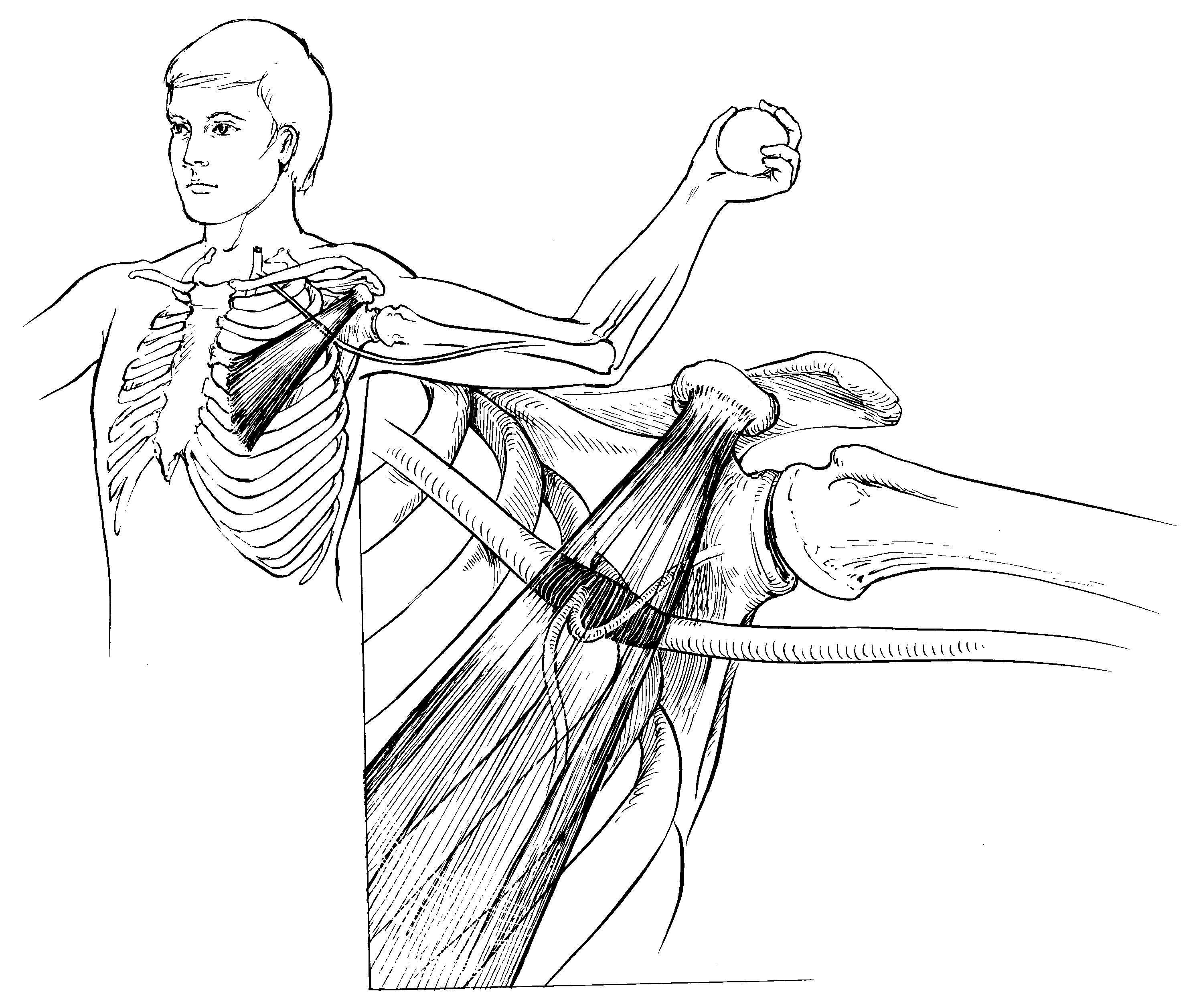 Good Stretches For Upper Back Amp Neck Pain