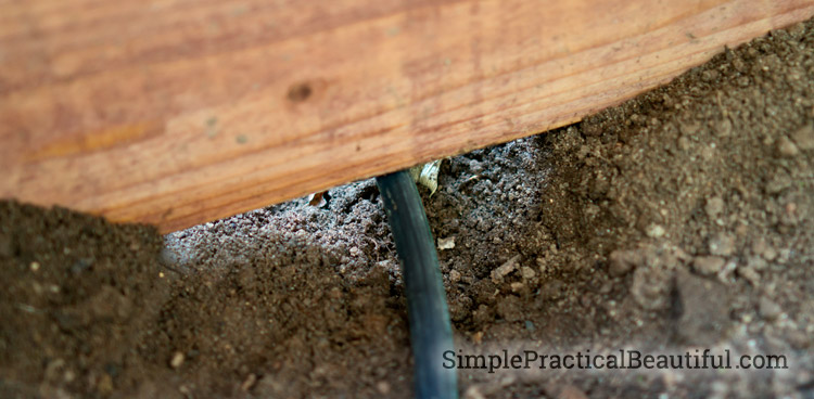 A drip system waters plants efficiently, and it's easy to install