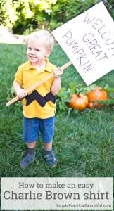 How to make a simple Charlie Brown shirt DIY for a Halloween costume or just for watching It's the Great Pumpkin Charlie Brown, including how to make the zig zag pattern